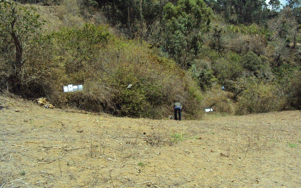 Tirada en Cáqueza-Cundinamarca 2010